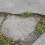WHAT CAUSES CRACKS IN A DRIVEWAY?